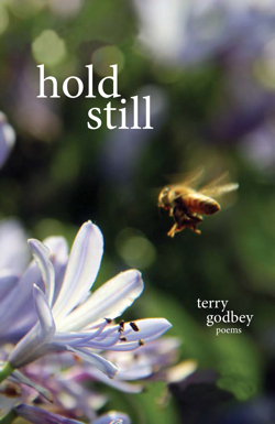 Hold Still cover low res 250 perfect web size